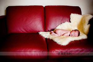 Couch_fresh