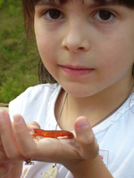 Abby and Red Eft