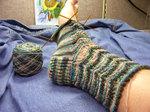 Lacy Scallops socks